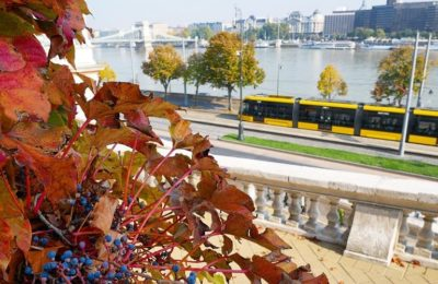 Top Marvelous Attractions To Visit In Hungary