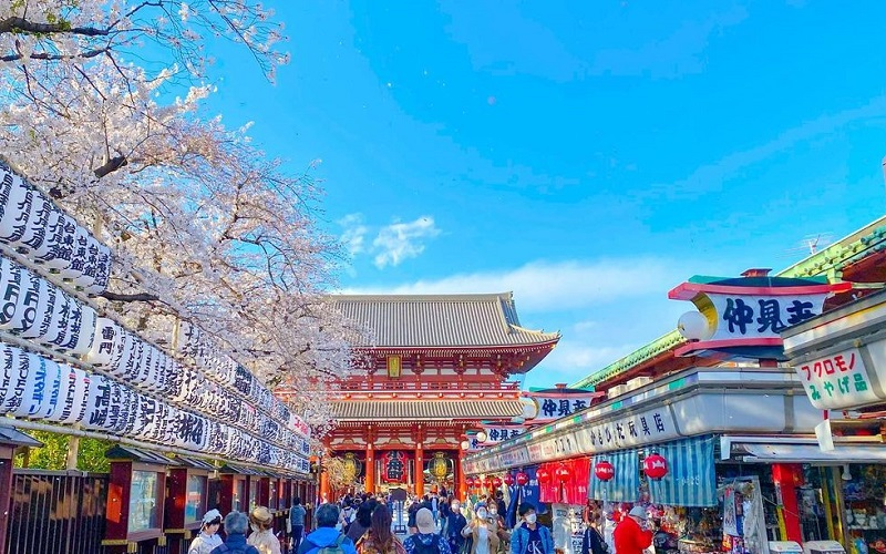 How To Enjoy One Day Trip In Tokyo, Japan